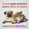 Anima Land SRL