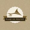 PlasedePescuit