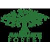Avangarde Forest