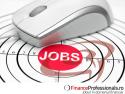FinanceProfessionals.ro prezentare1