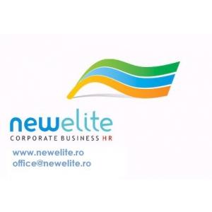 New Elite Consulting