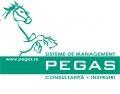 PEGAS Sisteme de Management