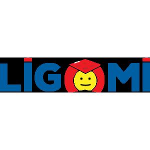 Ligomi Jucării