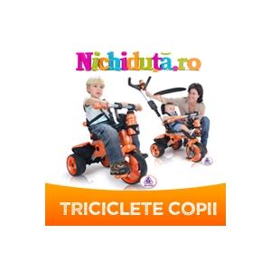 Nichiduta Trading SRL