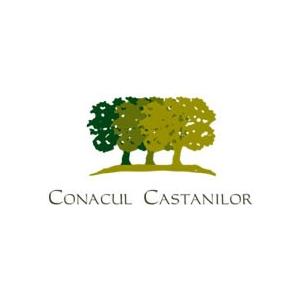 ANSAMBLU REZIDENTIAL CONACUL CASTANILOR