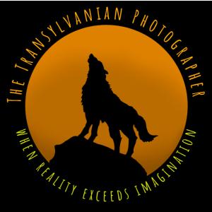 The Transylvanian Photographer