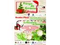 Târgul de Crăciun din Oradea 2014