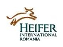"Ceremonie Heifer ""Dar din dar – Passing on the gift"""