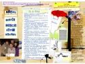 Reflectarea proiectelor Vis de Artist in anul 2012