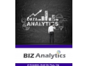 Biz Analytics