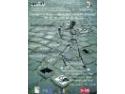 """COMUNICAT DE PRESA  Festivalul """"Dialogul Artelor – laborator artistic stradal"""""""