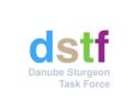 Ziua Internaţională a Dunării- Sturion 2020