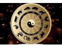 ASTROLOGIE CHINEZA - initiere si aplicatii practice - seminar interactiv la Mandala Club