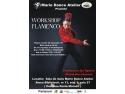 Workshop Flamenco la Cluj