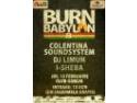 Burn Babylon 8 - Cea mai mare serie de evenimente reggae din Romania