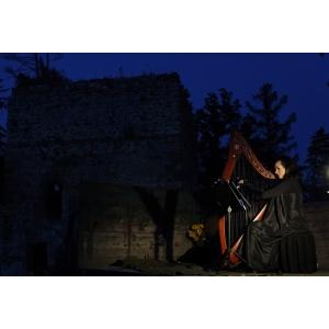 Acorduri pentru harpă şi proiecţie de cameră - duminică seara la Ateneul Român