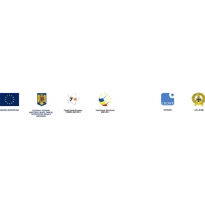 Conferinta regionala ANAMOB - Proiect POSDRU