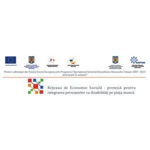 Studiu privind angajarea in munca a persoanelor cu dizabilitati in cadrul proiectului ID 56705