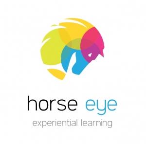 Seminar de leadership Horse Eye