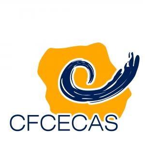 CURS de formare si CERTIFICARE in CONSILIERE VOCATIONALA, Targu Mures 28-29 noiembrie 2013