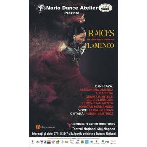 Spectacol Flamenco