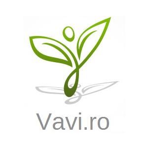 Vavi.ro