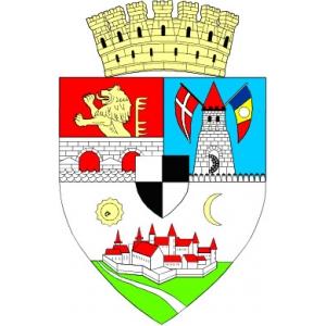 Primaria Municipiului Timisoara, Consiliul Local Timisoara