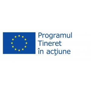 Comisia Europeana, Programul Tineret in Acţiune