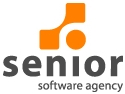 web future solutions. Senior Software Agency gestioneaza identitatea web pentru ABI Solutions – reprezentant Scala Electronic Gmbh