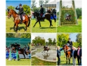 White Horse. Karpatia Horse Show 2016 și-a desemnat câștigătorii: Italia a luat laurii!
