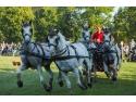 White Horse. Karpatia Horse Show 2016: opt mii de spectatori s-au bucurat de ineditul unui show ecvestru de anvergură internațională