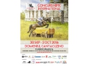 bust nobil dac. Karpatia Horse Show 2016, singura competiție ecvestră din România ce se desfășoară pe un domeniu nobiliar!