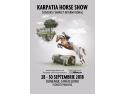 White Horse. Karpatia Horse Show 2018