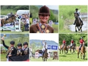 show stand up ploiesti. Transylvania Horse Show 2016