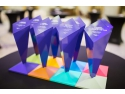 Infrasoft, membru Smart Alliance, premiat la Gala ANIS