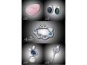 bijuterii din argint cu opal preţios natural la Accent Bijuterii