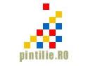 export. Lansare primului catalog online al companiilor IT din Romania ce au activitati la export in domeniul externalizarii (outsourcing) serviciilor si dezvoltarii de aplicatii software