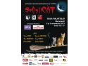 HalloWinner Cat Show