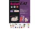 pisici. Expozitia Felina SofistiCAT