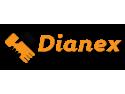 Dianex - consultant in afaceri