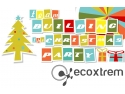 ecoxtrem. Team Building the Christmas Party!