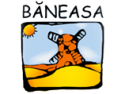 Baneasa a ales Senior Software