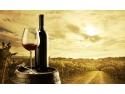 software. Grupul Halewood Wines Romania a redus cu 50% timpul de prelucrare si organizare a datelor in urma utilizarii solutiei CPM de la Senior Software