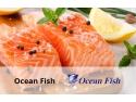 Ocean Fish si-a imbunatatit activitatea cu solutiile Senior Software