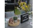 JYSK a lansat colectia de mobilier și accesorii de grădină 2019