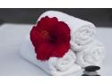 Brodank dispune si de optiuni de prosoape pentru hoteluri KitchenShop  www pentrugatit ro