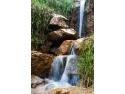 Despre calitatea apelor minerale din Romania  Axioma Solutions