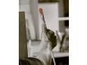 Materiale de calitate si cursuri de pictura de la artistique.ro testari LCCI