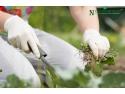 Nu Oricum - magazinul online de unde agricultorii isi incep primavara! campanii marketing