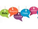 birou de traduceri profesional. servicii-traduceri.ro